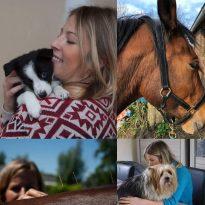 Acupunctuur hond/kat/klein dier